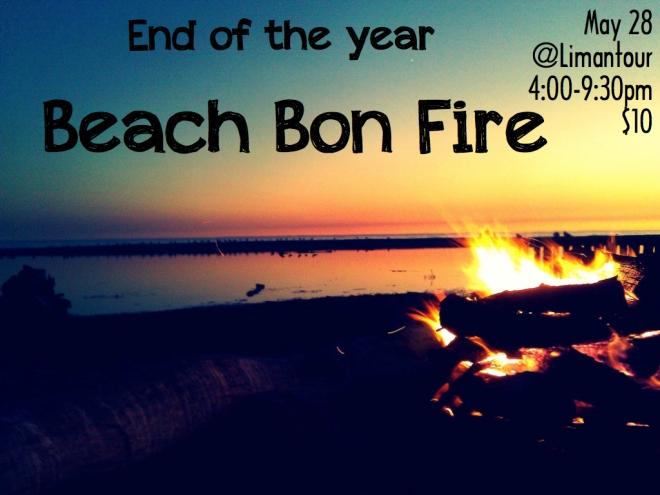beach bonf fire.001